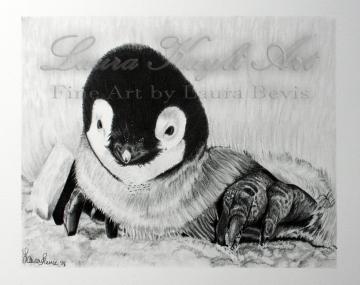 """""""Baby Penguin"""""""