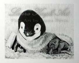 Baby penguin-Watermark