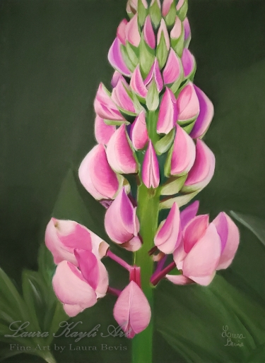 Lupine in Pastel