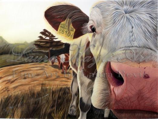 Cow-watermark